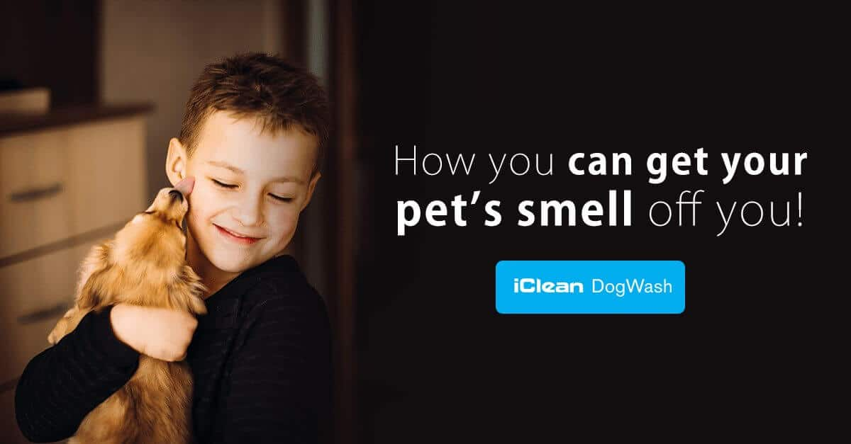 get pet's smell off you