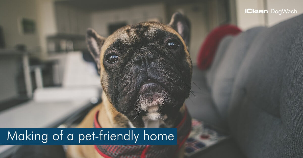 Pet-Friendly Home