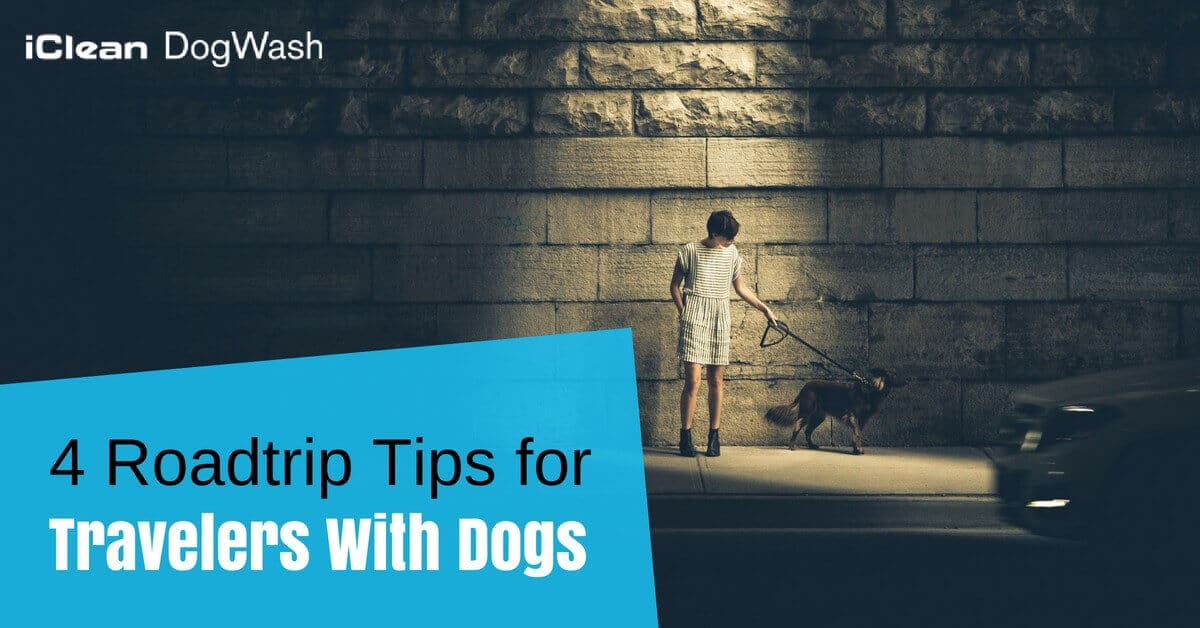 Roadtrip Tips With Dogs