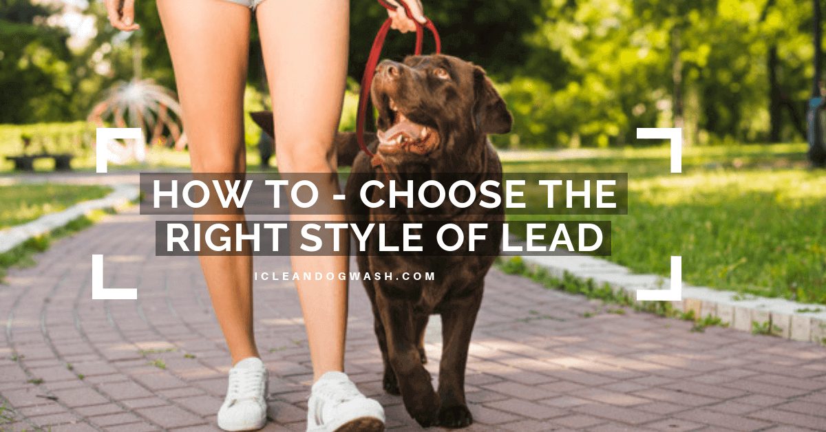 Style of Lead