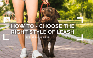 style of leash