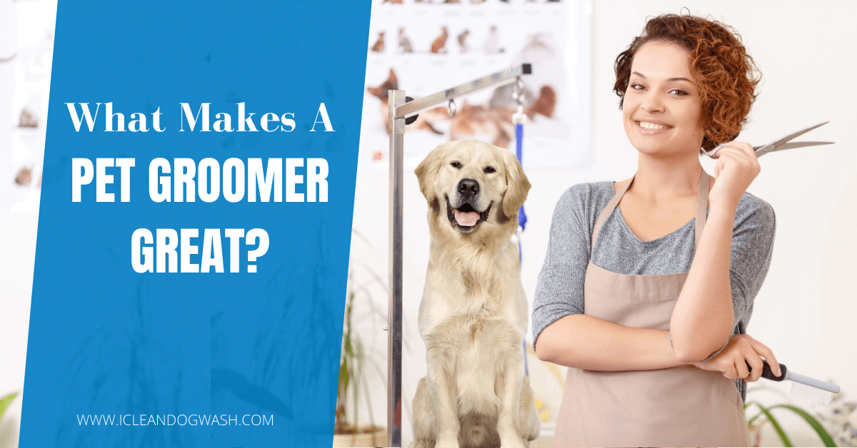 What Makes a Pet Groomer Great?||Knowledge About the Pets