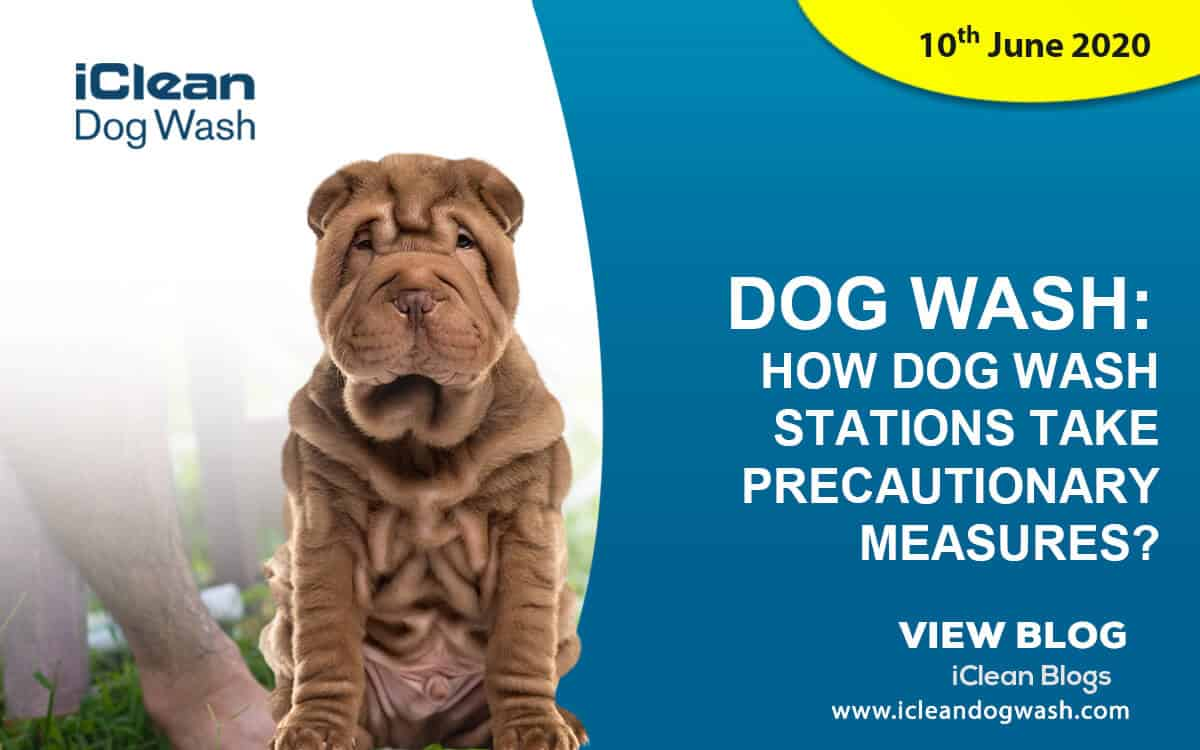 How Dog Wash Stations Take Precautionary Measures?||Online booking
